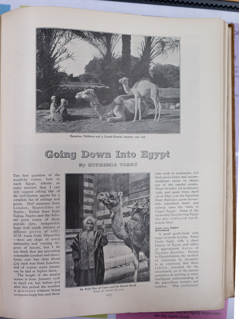 Going Down to Egypt. By Euphemia Torry