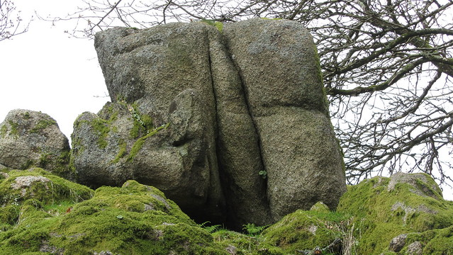 Boulder on Whitehill Tor lower outcrop