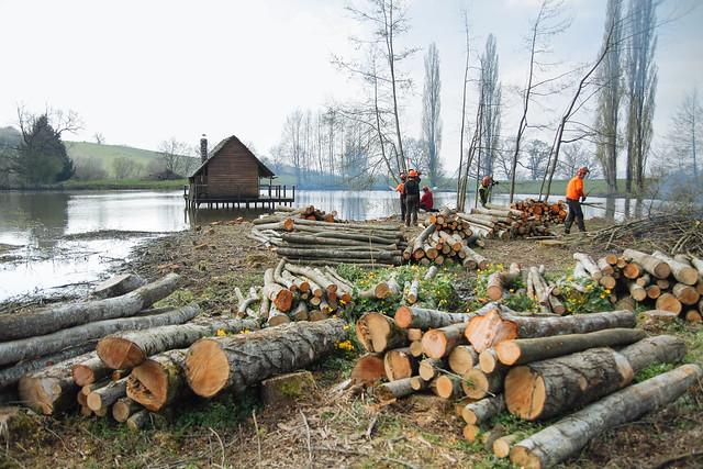 Chantier Terminales Forêt