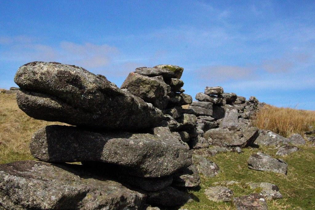 Stone baby xenomorph   This stone on Rough Tor, Dartmoor rem