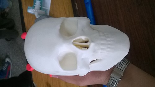 3D Printed real scan | by IndianTinker