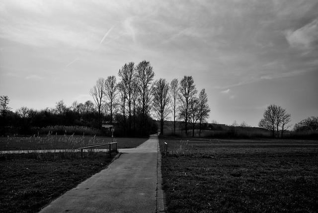 Frühling in Schwarzweiß