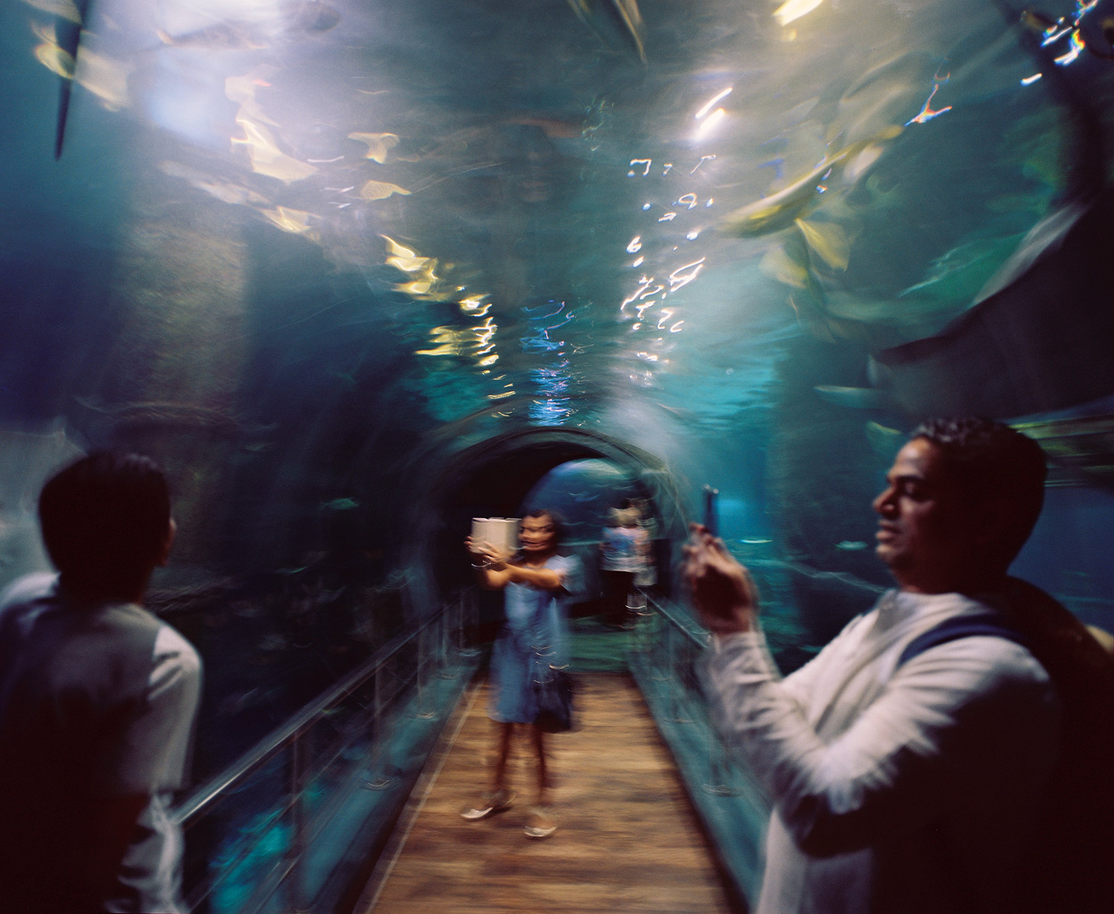 Melbourne Aquarium ii