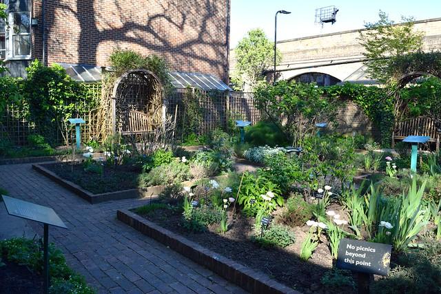 Herb Garden at The Geffrye Museum of the Home | www.rachelphipps.com @rachelphipps