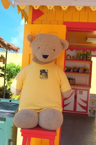 Teddy Bear, St. Maarten (Maasdam 2013 Cruise)