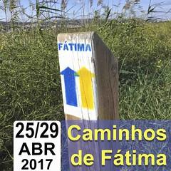 13 - Caminhos de Fátima