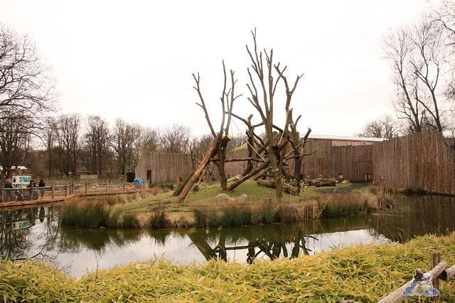 Tierpark Magdeburg 11.03.2017  083