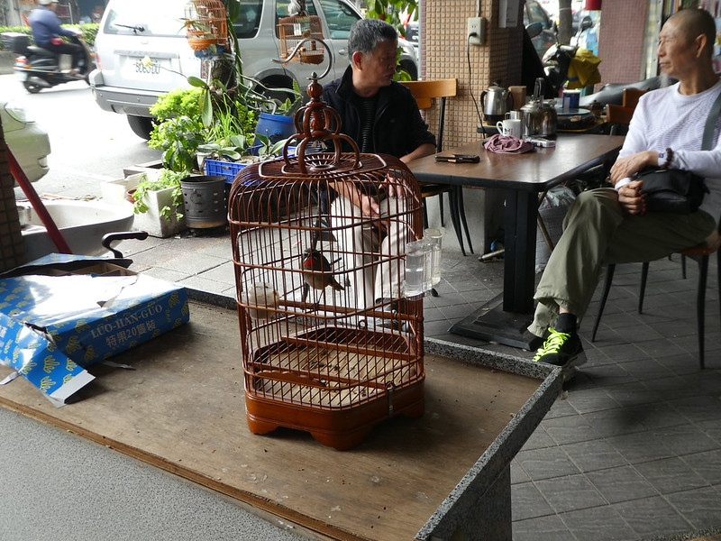 Street in Taipei selling caged birds