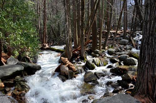 Near Bridalveil Falls