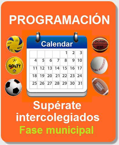 icono programación fase municipal