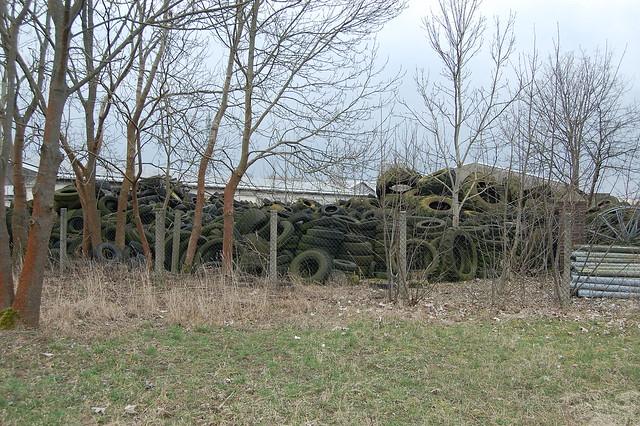 Bild: ein Haufen alter Auto- und Traktorenreifen, die Moos angesetzt haben, hinter Altlandsberg
