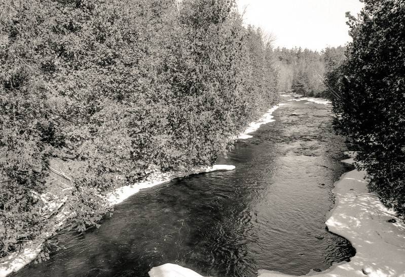 Credit River in the Thaw Two