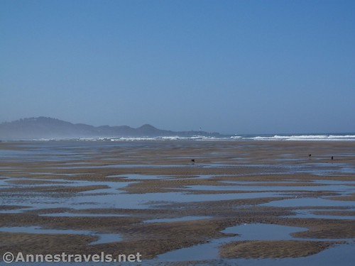Pools of water at low tide along Beverly Beach, Oregon