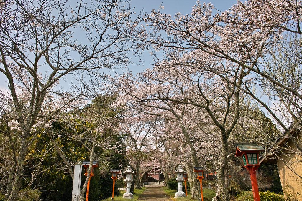 東豊野神社 #3