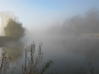 Mist on the River | by wit