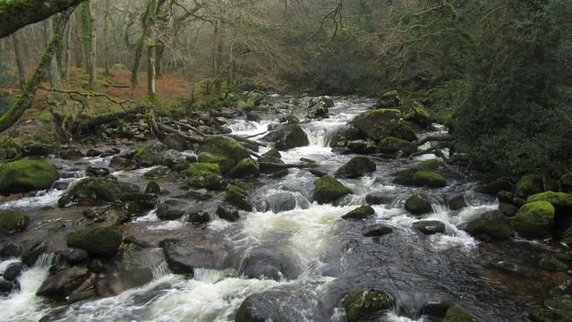 The River Plym