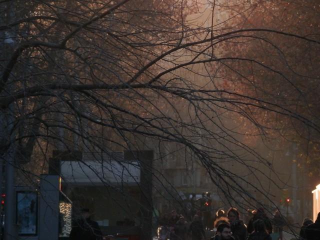 Luz de tarde en el paseo