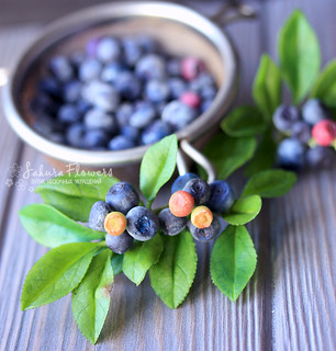 hairpin with blueberry