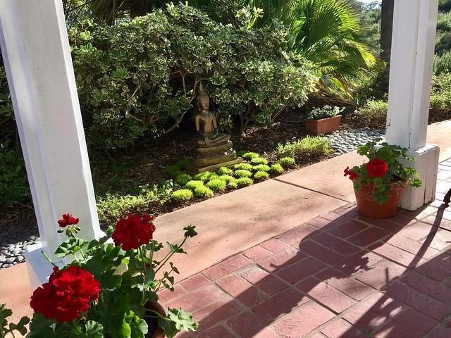 Meditative Gardening...