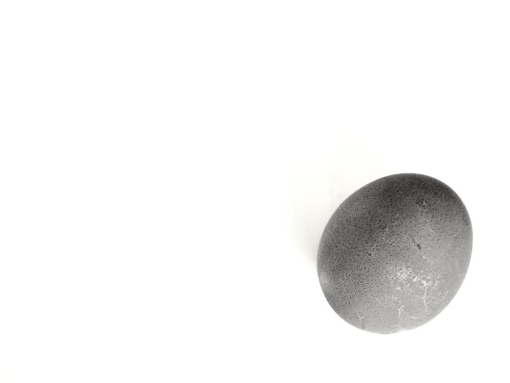 2017-04-16_09-26-29