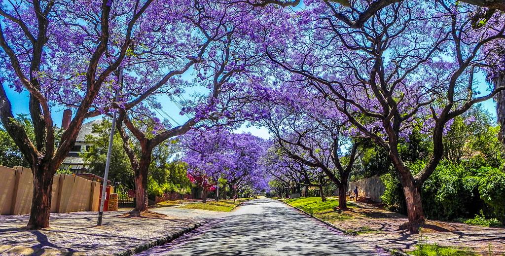 Pan street Pretoria HDR