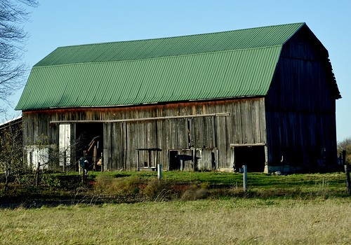 Green roofed barn