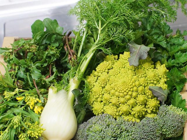 Vegetables. 野菜