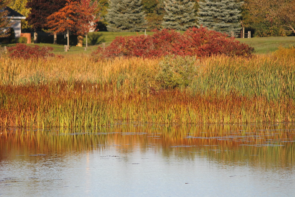Island Park Alpena Michigan October 11 2014 Visited Flickr