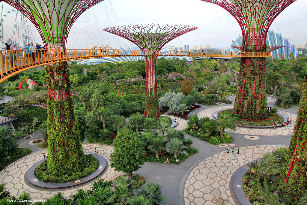 Garden By The Bay Cloud Forest flower & cloud forest domes & supertrees grove aerial boar… | flickr