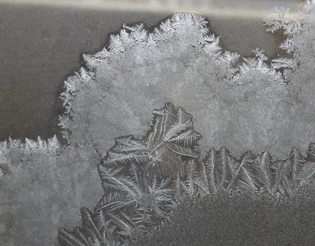 Frost Paintings