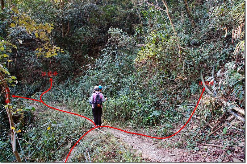 田良井山前峰、西峰登山口 1