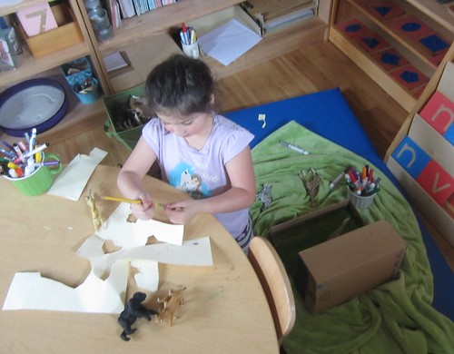 drawing animals for her diorama