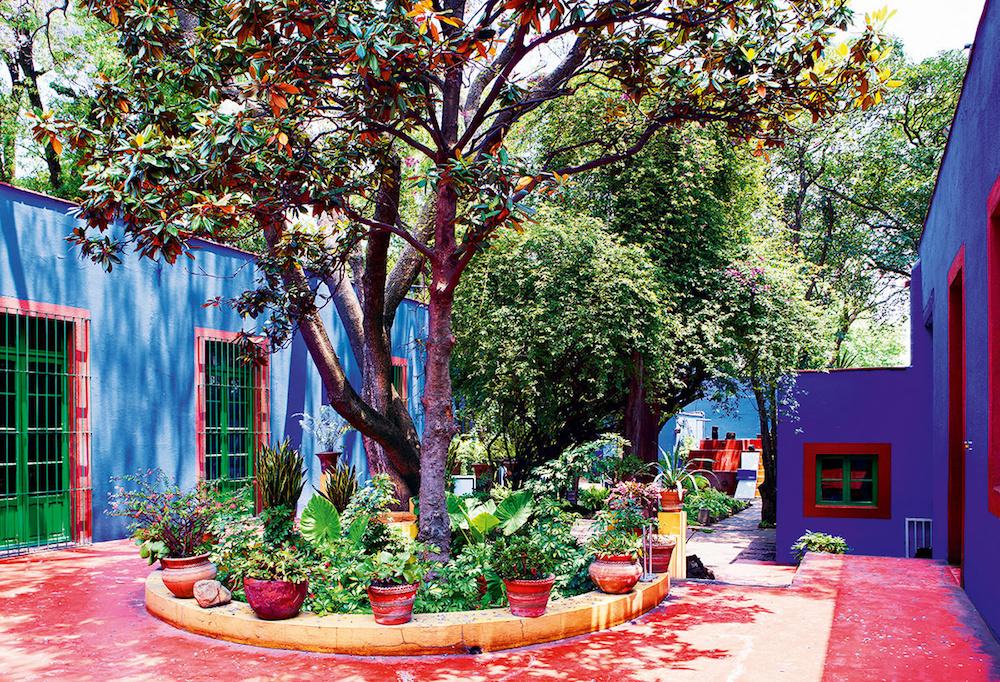 la_casa_de_frida_kahlo_en_cayoacan_mexico_769205086_1200x818