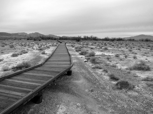 Ash Meadows National Wildlife Refuge (3734A)