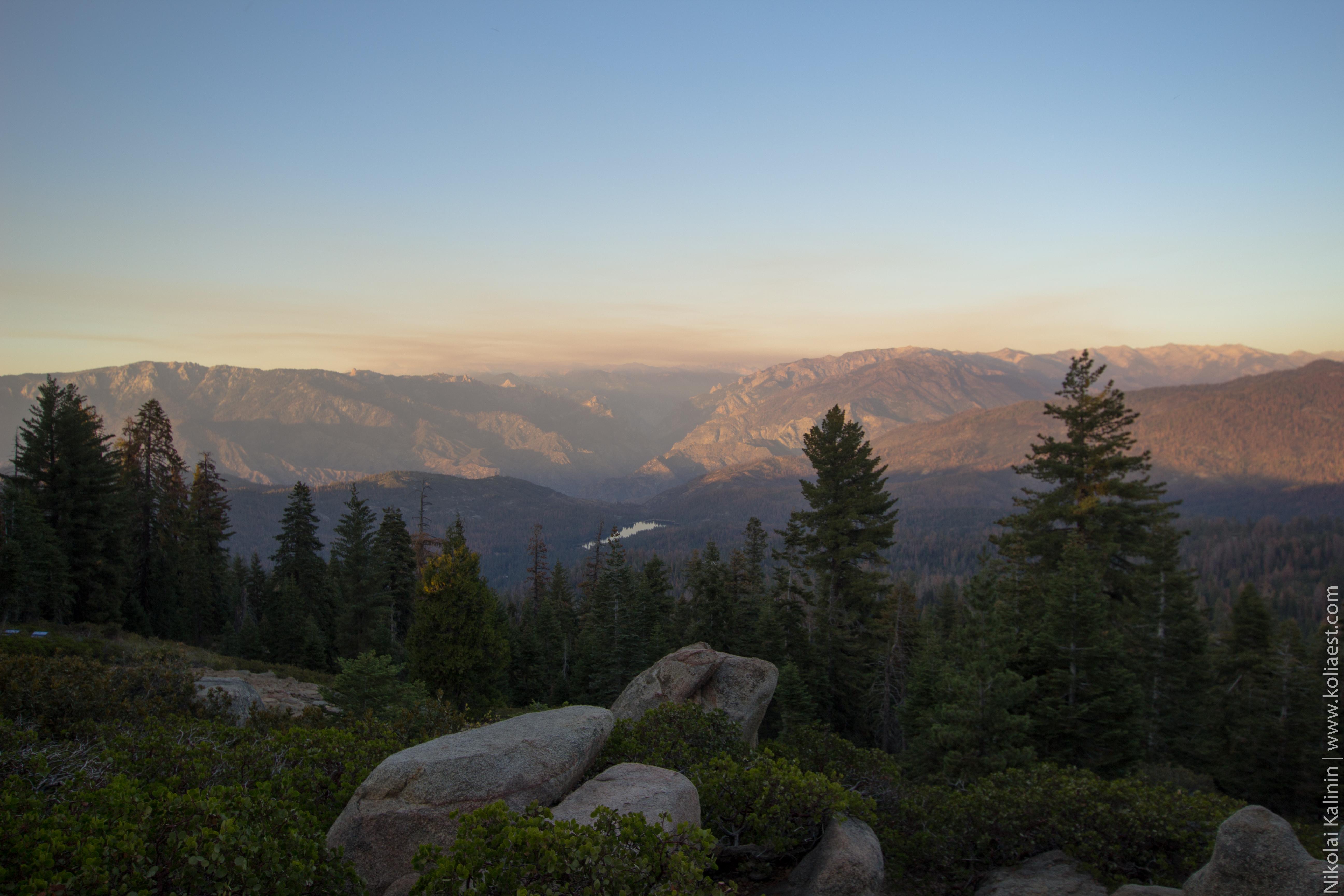 Sequoia-89