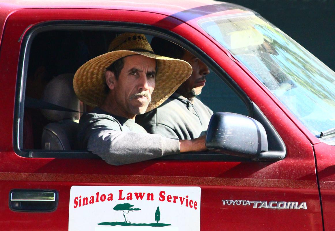 Sinaloa Lawn Service
