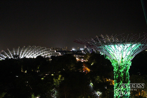 160910f OCBC Skywalk Gardens by the Bay _064