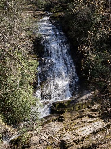Laurel Fork Falls- 6