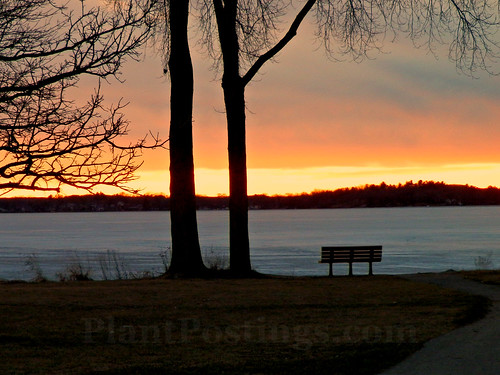 sunset with bench