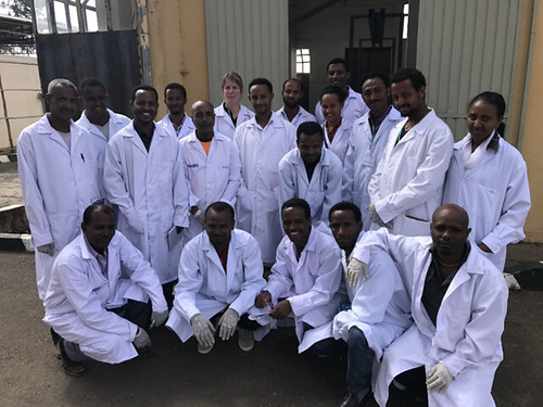 Veterinarians, laboratory technicians and assistant veterinarians from Ethiopia who were trained on field postmortem examination and sample collection in small ruminants
