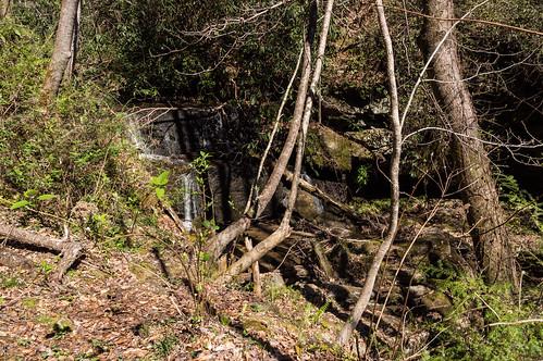 Jackies Branch waterfall #2