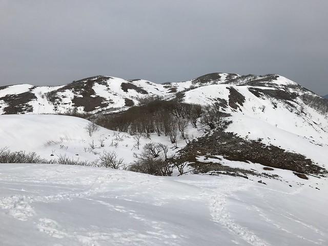 霊仙山 今畑ルート 西南尾根 登山道