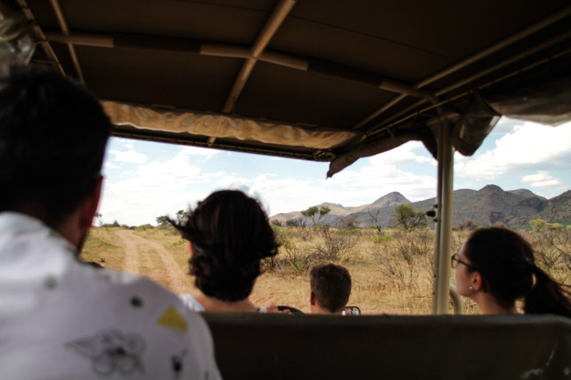 Safari in Windhoek