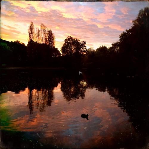 Schwabinger See am Morgen