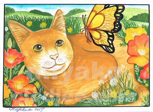 Cat with butterfly and California poppies