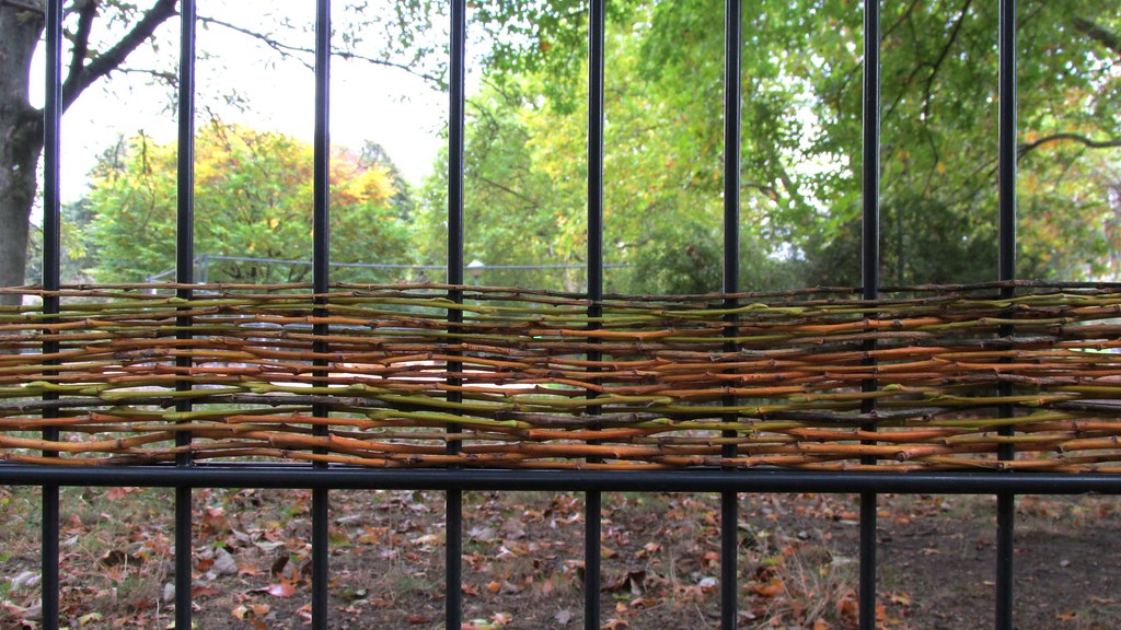 Weaving I Was In A Bad Mood And So I Took A Walk To The Ri Flickr
