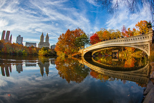 Fall Foliage in Central Park New York City 2014 | by Anthony Quintano