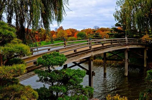 Bridge To The Japanese Garden Explore 241 39 14 Chicago