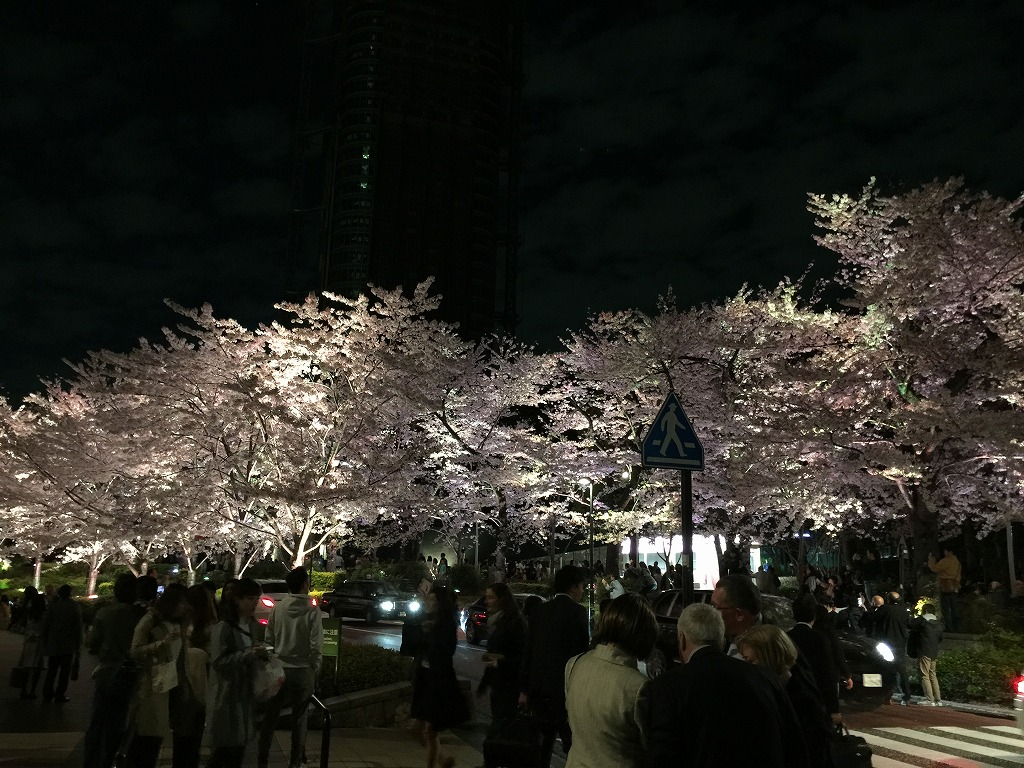 20170407_Tokyo Night Cruising (3)