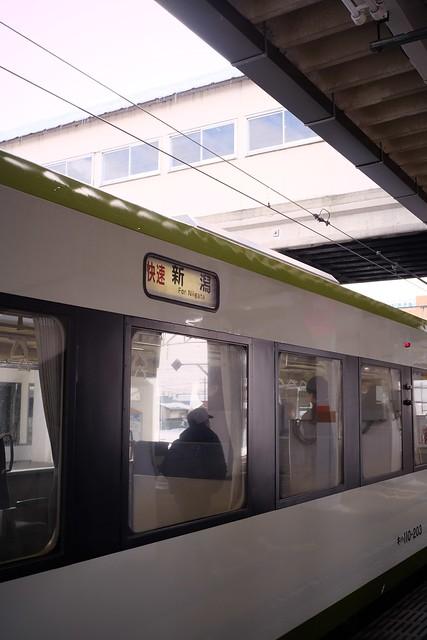 FXP21977